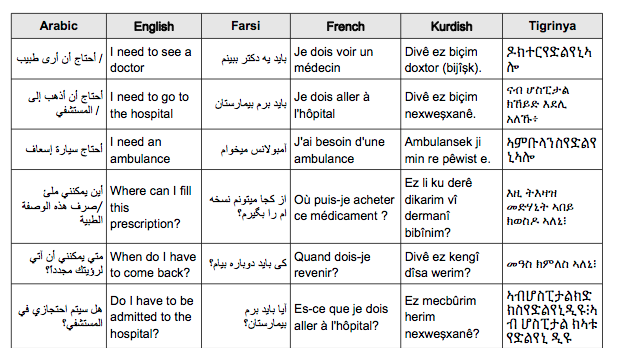 Medical Phrasebook (France, UK)